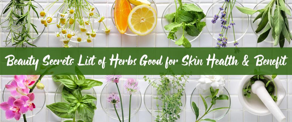 Herbs Good For Skin